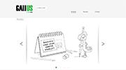 Aperçu du site Gallus Création